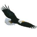 Northeast Security logo
