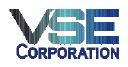VSE logo