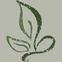 Wingate Healthcare logo
